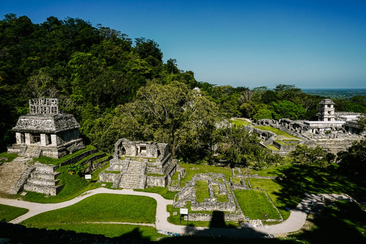 Discover the Palenque Mayan ruins in Chiapas