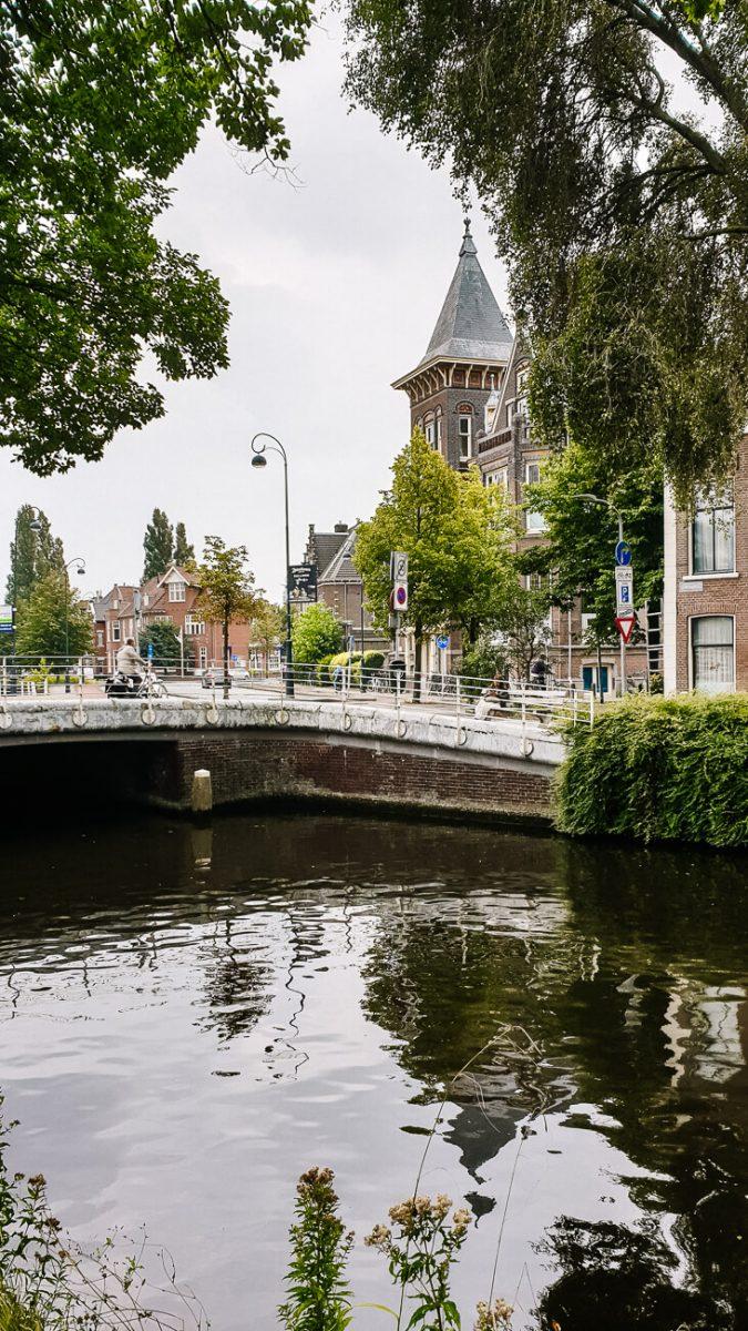 boat haarlem | Haarlem things to do