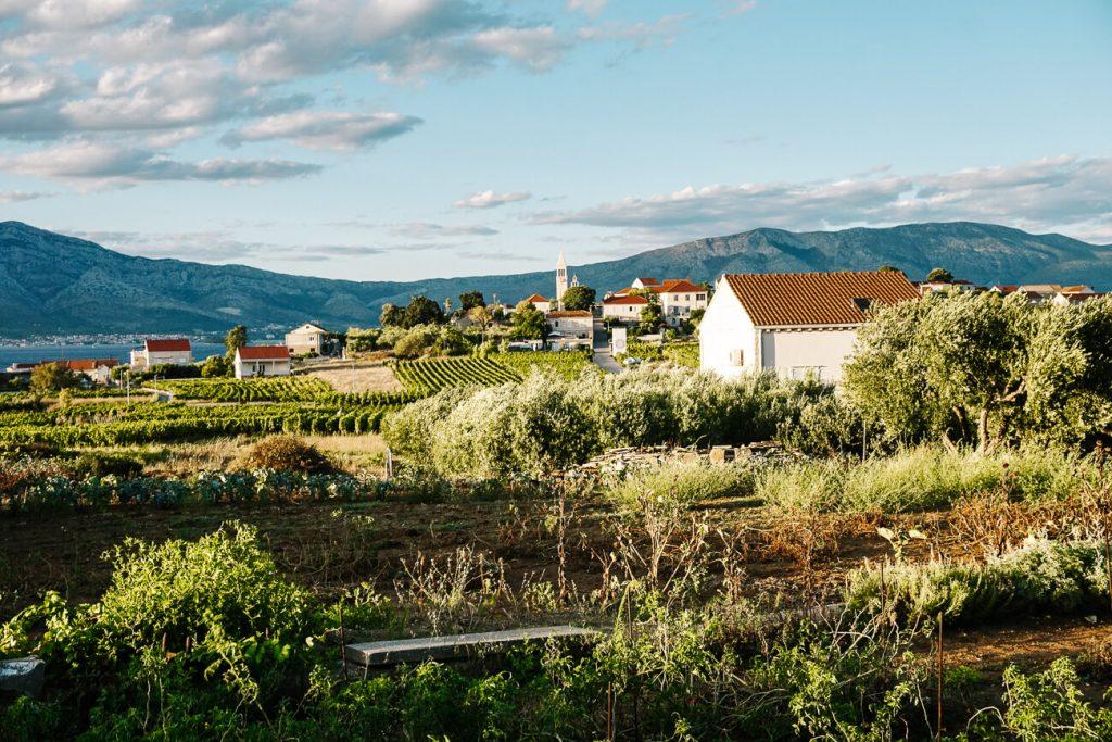 uitzicht vanaf wijn proeverij Vitis, in dorpje Lumbarda op eiland Korcula, Dalmatische kust Kroatie