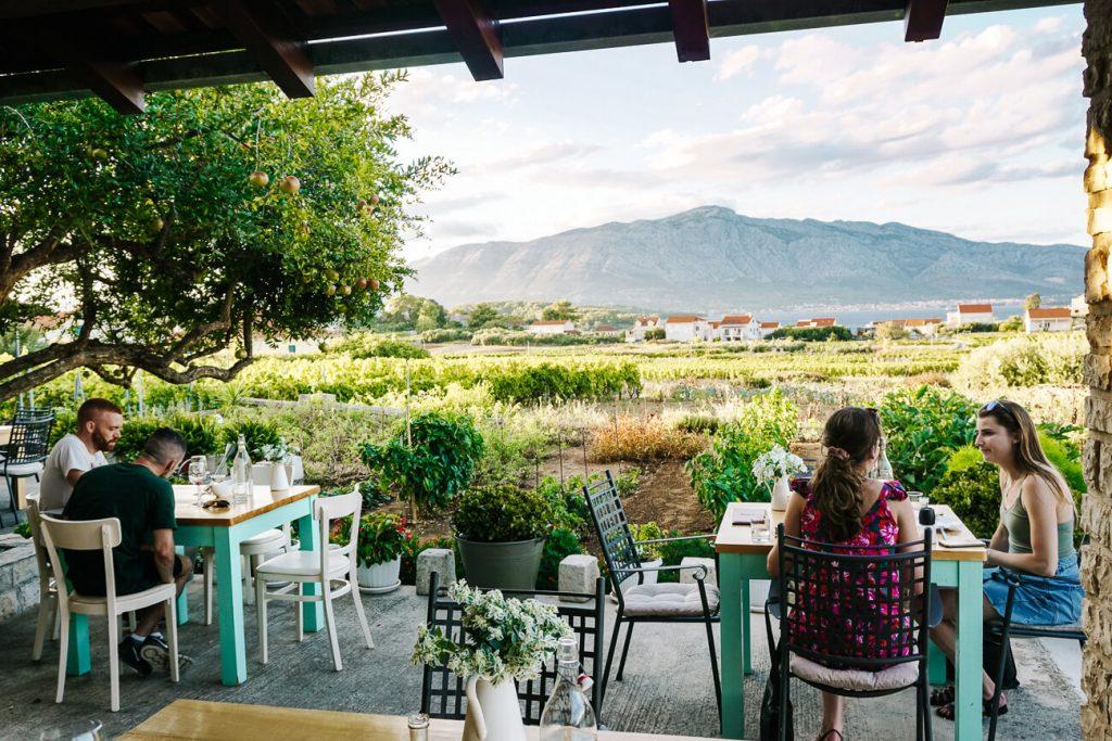 wijn proeverij Vitis, in dorpje Lumbarda op eiland Korcula, Dalmatische kust Kroatie