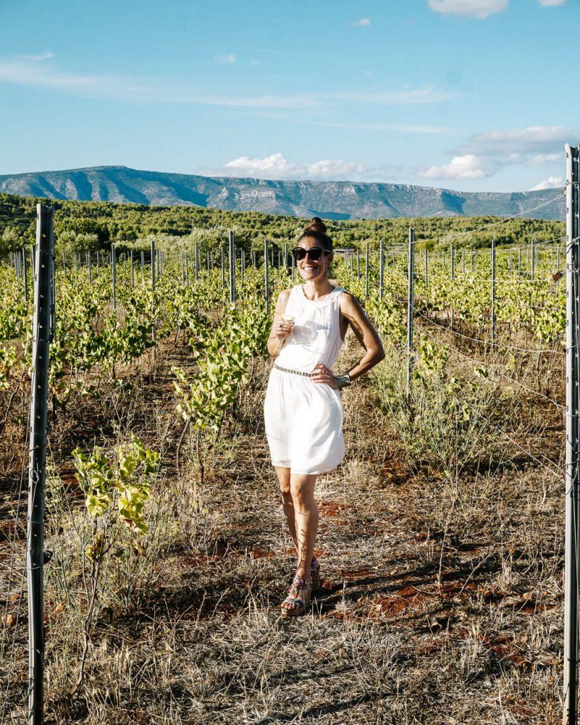 wijn proeverij in Stari Grad, tijdens cruise in Kroatie