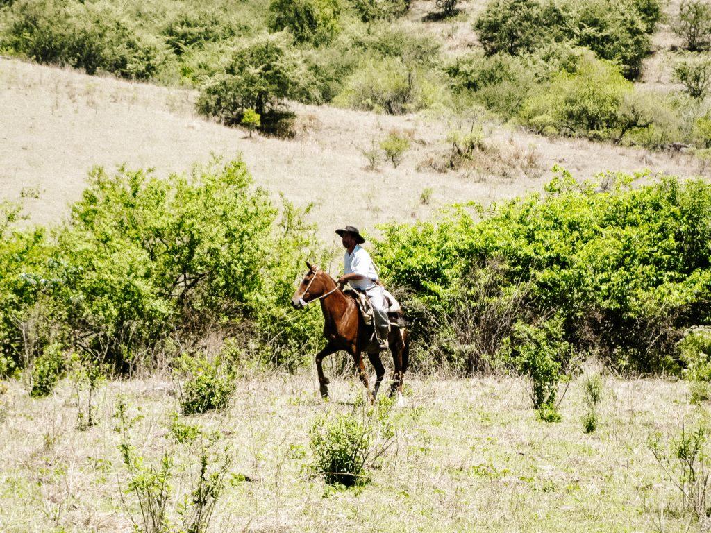 bezoek een argentijnse ranch