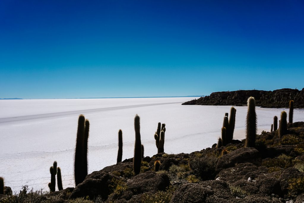 Best time to visit Bolivia salt flats