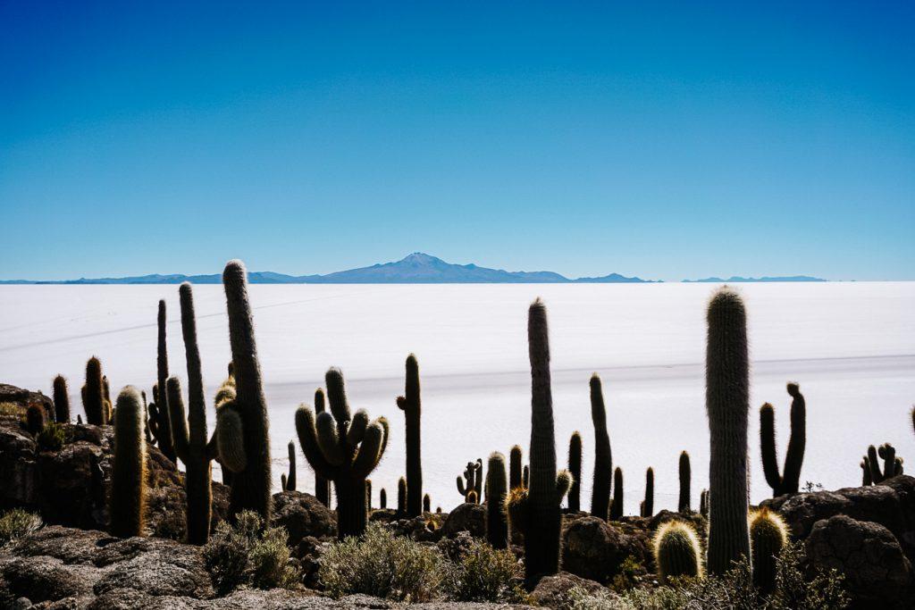 zoutvlakte Uyuni Incahuasi