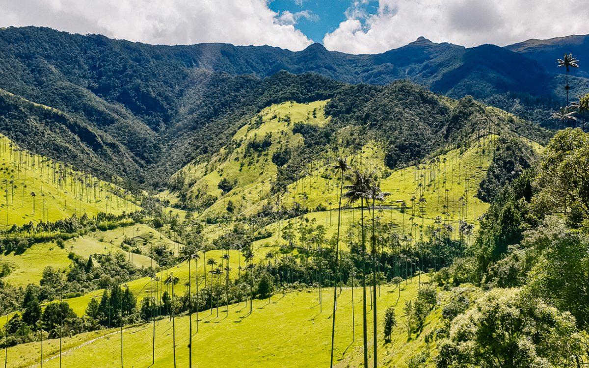 Cocora valley Colombia | valle de cocora long hike