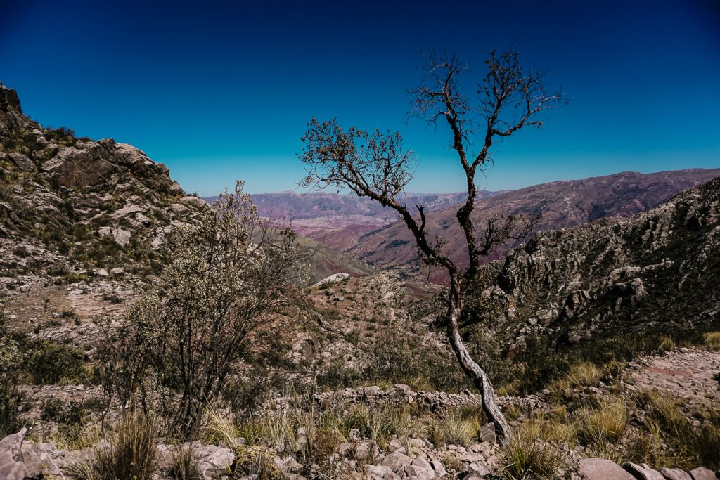 hiking in Bolivia   view of trail