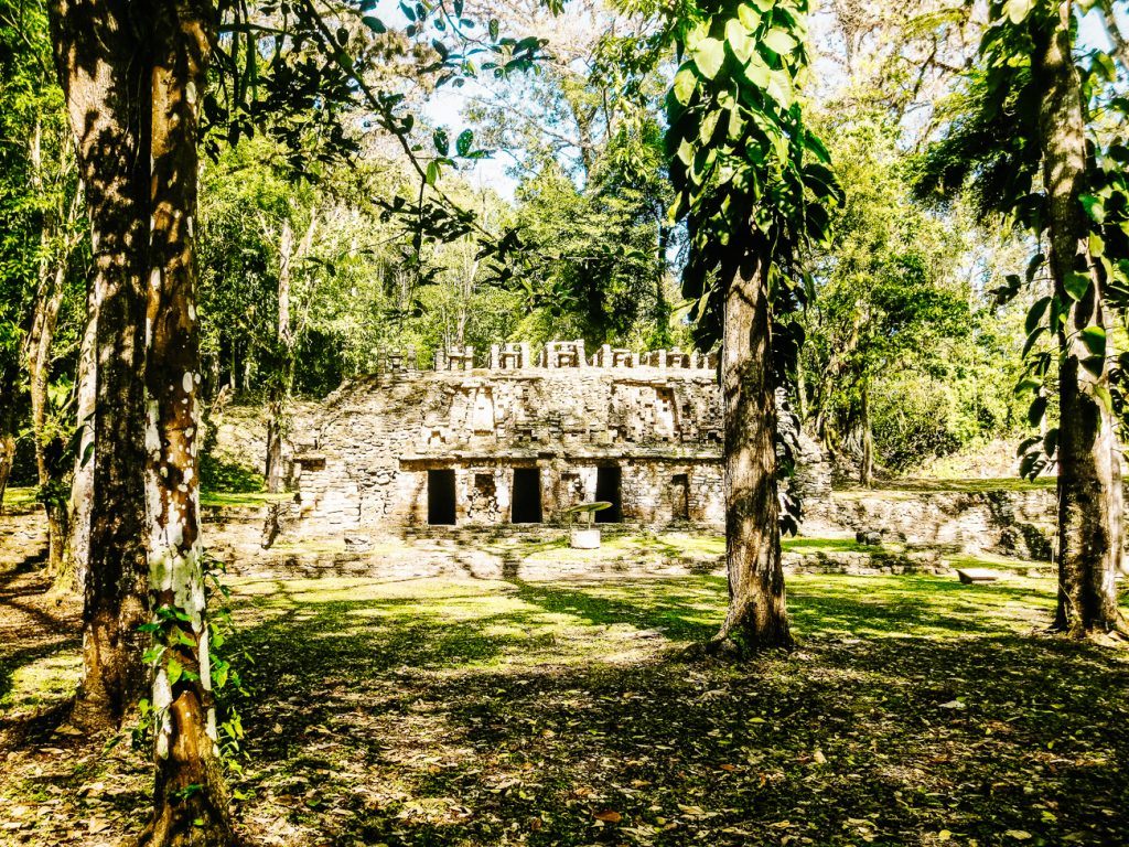 ruins in the jungle