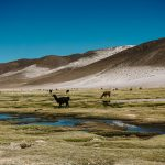 best time to visit bolivia