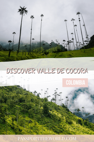 Pin Cocora valley Colombia